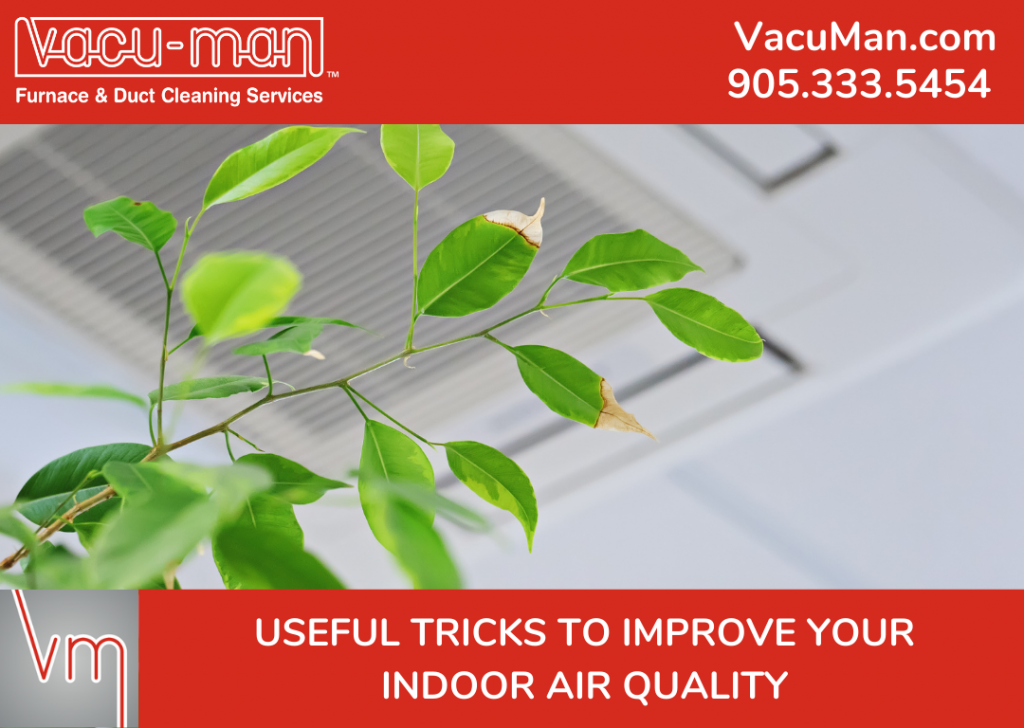Useful Tricks To Improve Indoor Air Quality